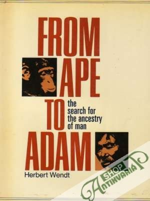 Obal knihy From Ape to Adam - The Search for The Ancestry of Man